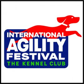 International Agility Festival