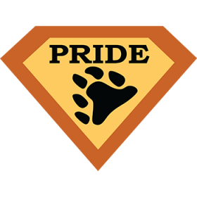 PRB003 - Super Pride Bear