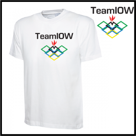 TeamIOW Mens Classic T-Shirt (UC302)