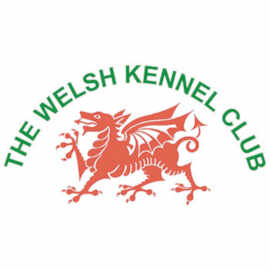 Welsh Kennel Club